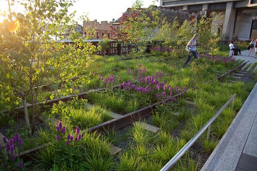 Ian barker garden design perennial garden inspiration for Planting the natural garden piet oudolf