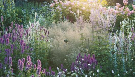 Ian Barker Garden Design Perennial Garden Inspiration
