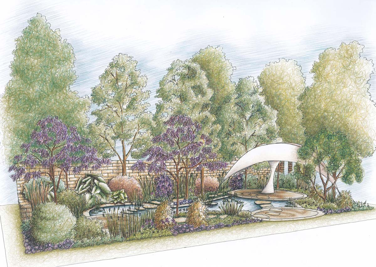 The Endeavour Garden designed by Ian Barker Gardens for the 2011 RHS Chelsea Flower Show perspective drawing.