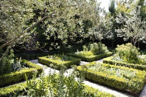 Plant focused parterre garden with a Mediterranean twist in Glen Iris designed by Melboune garden design company Ian Barker Gardens
