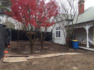Ian Barker Gardens. Canterbury Project.Garden Design. Front garden, tree transplantation