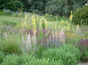 Cassian Schmidt International Garden Designer. Ian Barker Gardens. Garden Notebook Edition 23