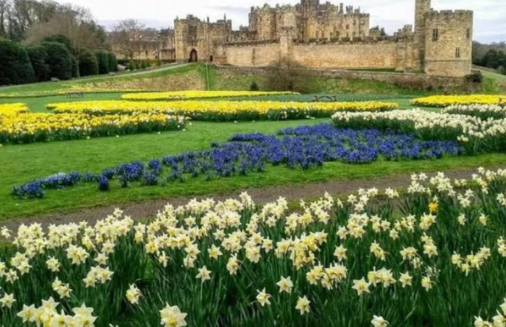 Alnwick Castle, Northumbland garden design, featured in Ian Barker Gardens blog on garden design styles - Curves or Straight Lines?