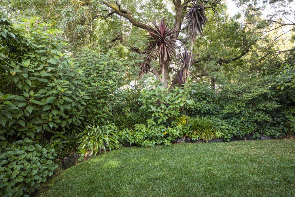Informal side garden design at Box Hill project by Ian Barker Gardens