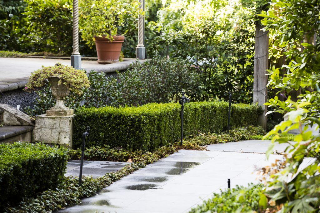 Classic formal front garden design at Ian Barker Gardens Box Hill Project