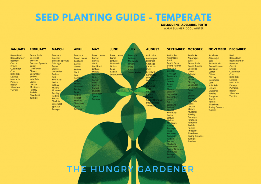 The Hungry Gardener Seed Planting Guide