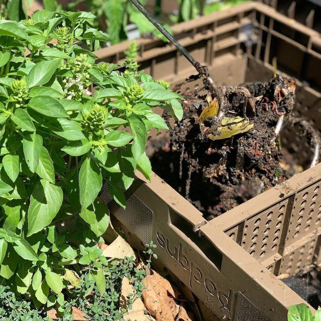 Subpod Compost Bin