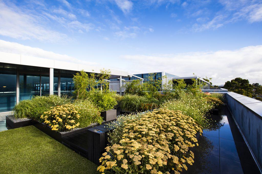 Rooftop Garden - Mt Waverley, VIC